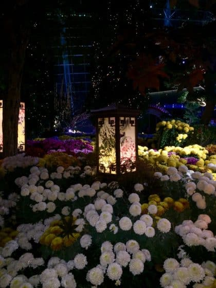 Gardens of the Bay, Singapura