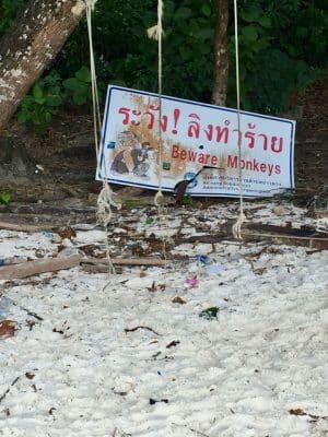 Passeios em Phi Phi, Monkey Beach, Tailândia