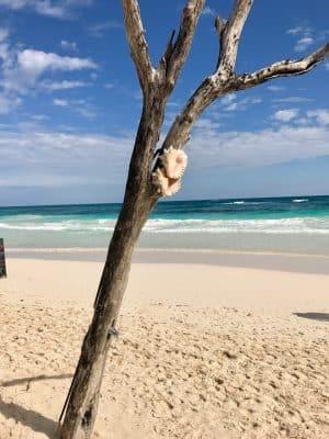 Praia do Coco Tulum, em Tulum, México