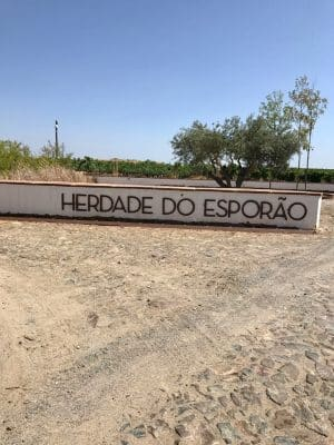 Herdade do Esporão - Alentejo, Portugal