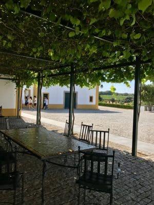 Adega Cartuxa - Alentejo, Portugal
